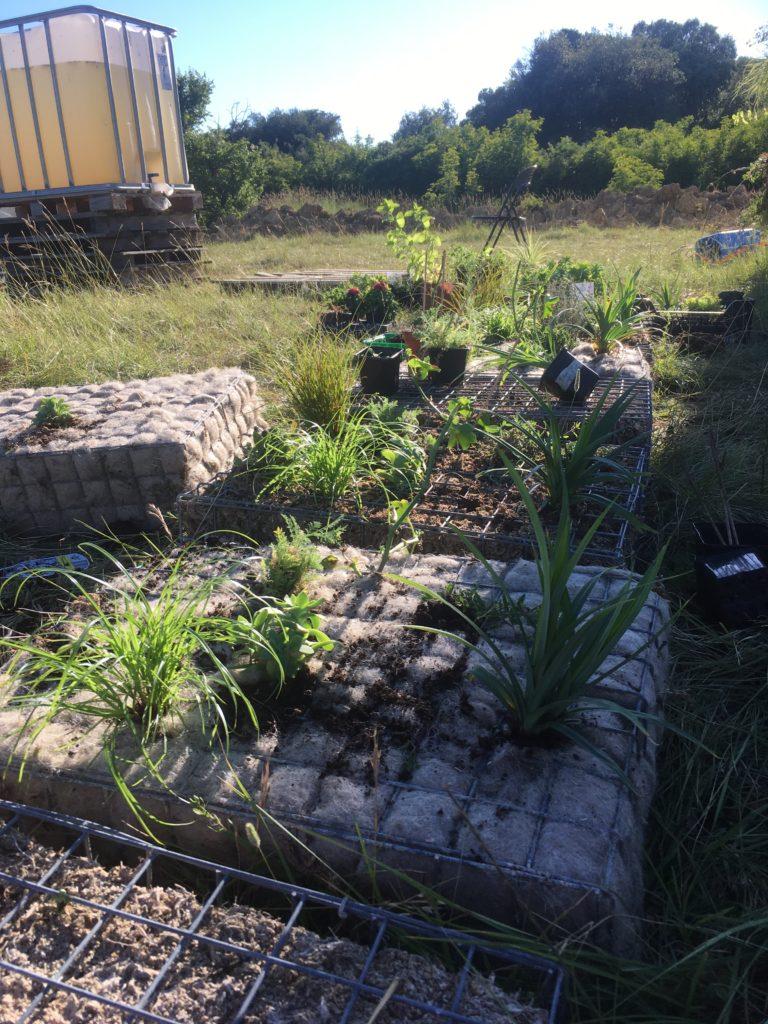 Cycloasis - préparation du mur végétalisé