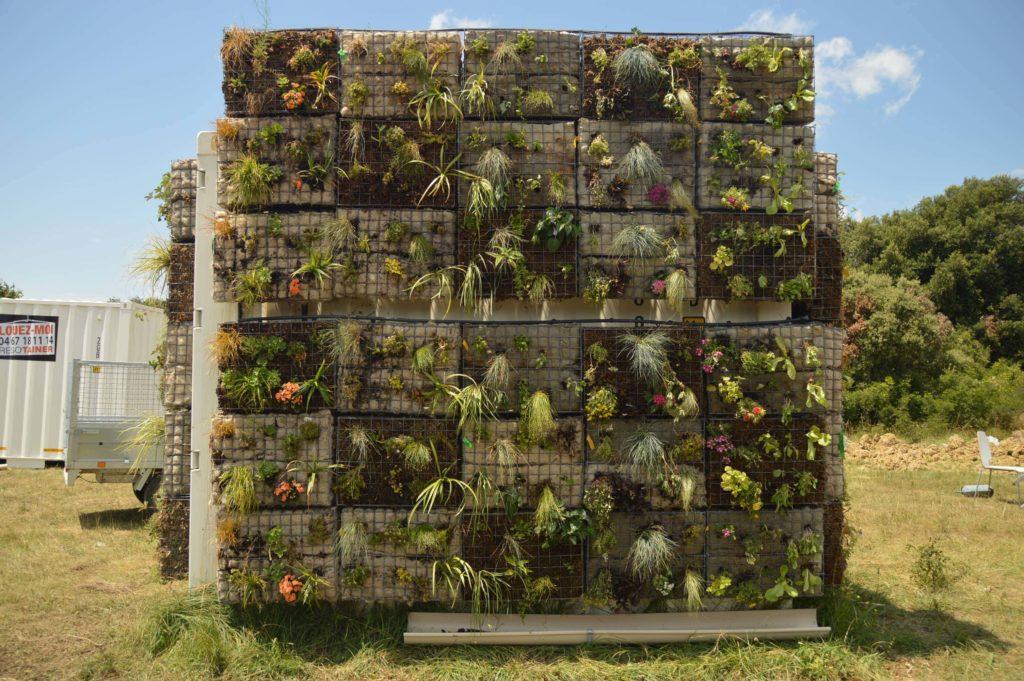 Cycloasis - Plantes du mur végétalisé de la climatisation naturelle et circulaire